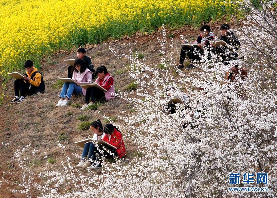 春日寻芳  多彩山乡
